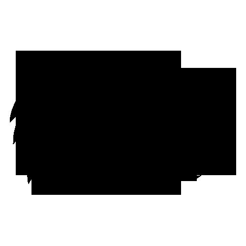 Iowa Hawkeyes logo
